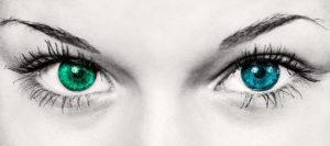 cropped-eyes-586849_1920.jpg