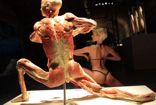 Výstava lidských těl v Praze