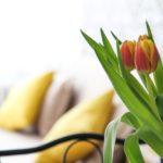 5 tipů na stylový bytový textil