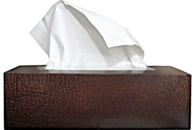 handkerchief-2003576_1280