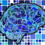 Hyperaktivita je v mozku…